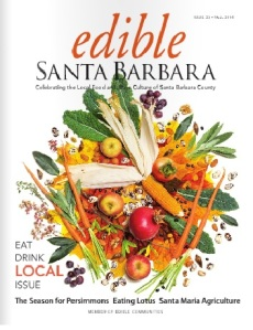 Edible SB cover